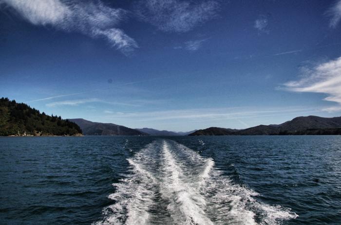 Neuseeland-Mailboat-Cruise