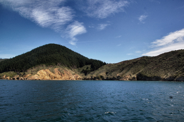 Neuseeland-Marlborough-Sounds