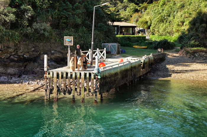 Post-Marlborough-Sounds