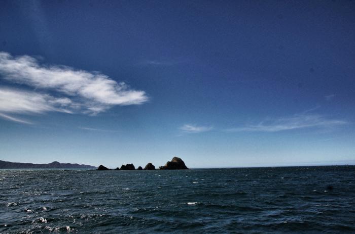 Scenic Cruises-Marlborough-Sounds