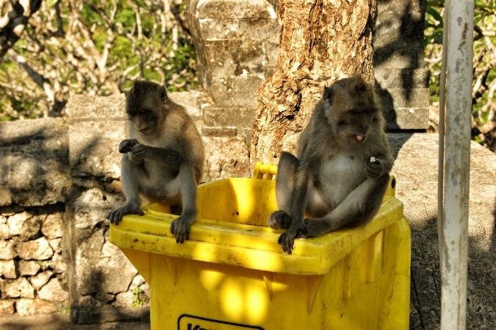 14 Tage Bali Urlaub - Uluwatu Tempel