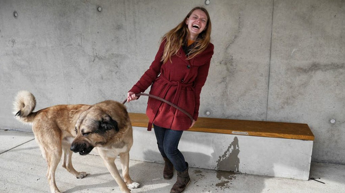 Christine-Neder-Hund