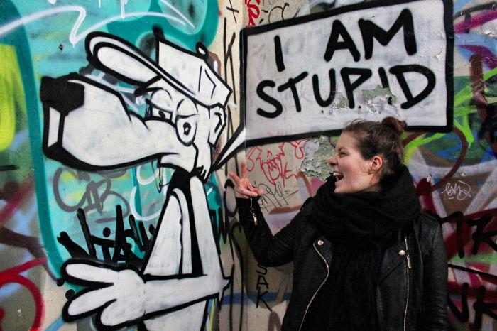 Anne Steinbach I am Stupid