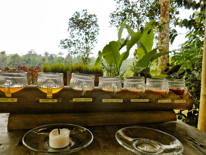 Tee in Ubud
