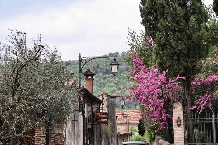Region-Padua