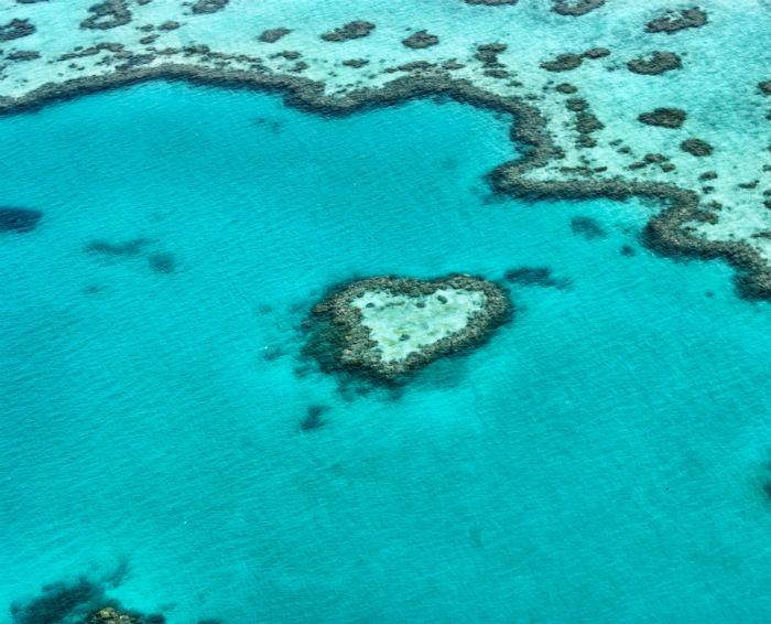 Herzriff Great Barrier Reef