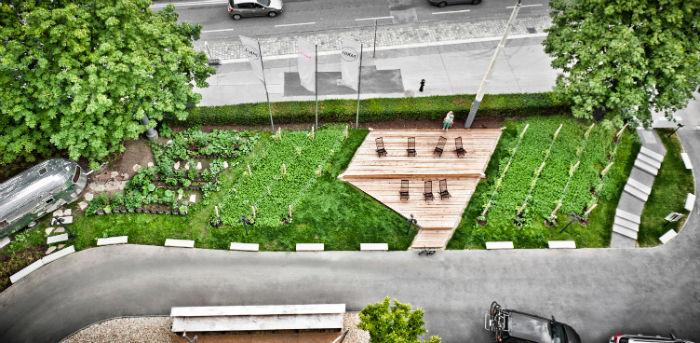 Hotel_Daniel_gardening_ff-w700