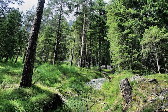 Tirol_Zugspitzarena_9