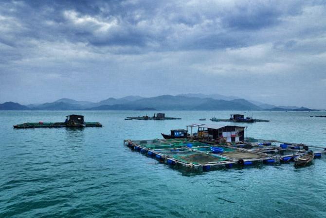 nin-van-bay-fischerinsel