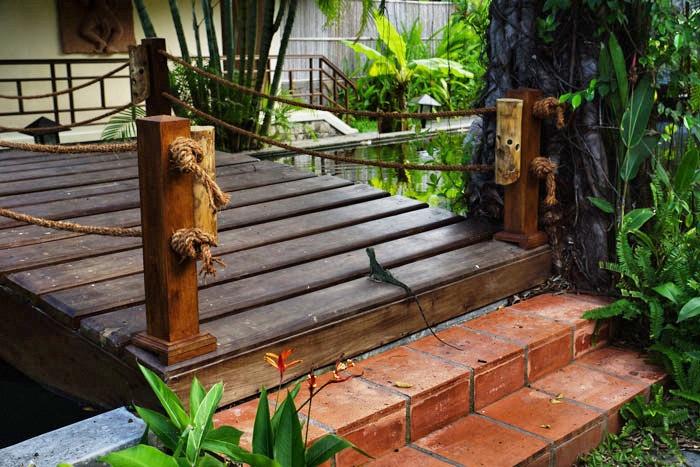 vietnam-nhatranggecko