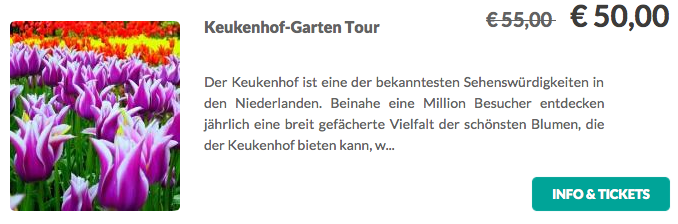Amsterdam-Keukenhof-Garten-Tour