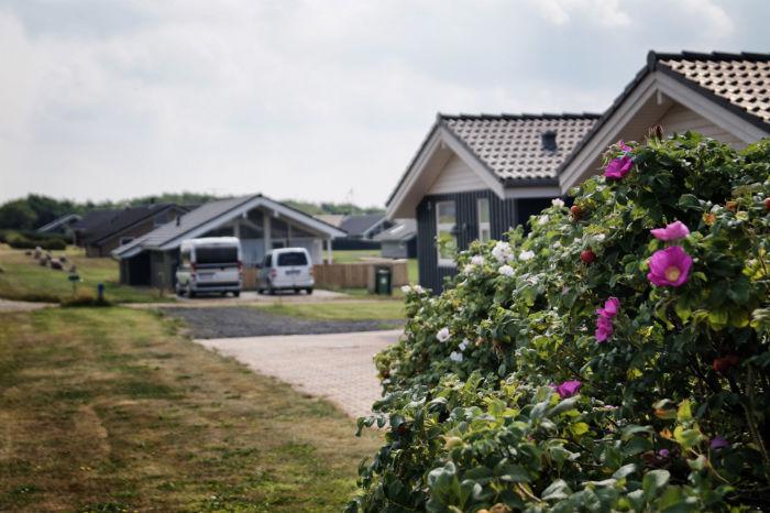 Ferienhaus_in_Dänemark_mieten2