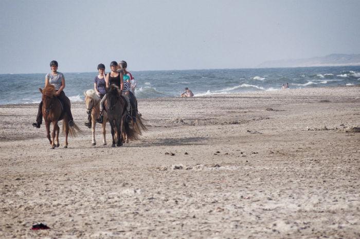 Gründe Urlaub in Dänemark zu machen3
