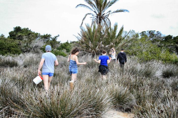 Insel_Formentera26
