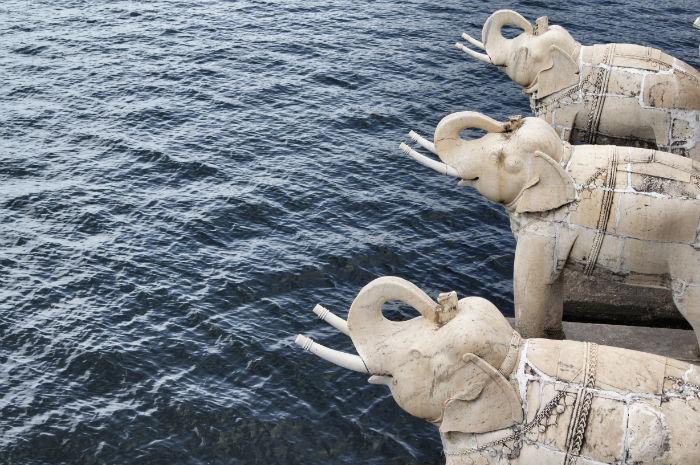 urlaub_in_indien_Elefanten in Udaipur