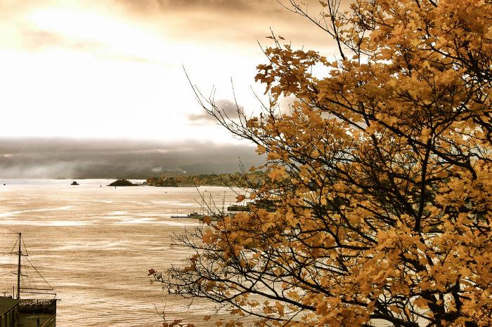 Herbst Wochenende im Fjord von Oslo