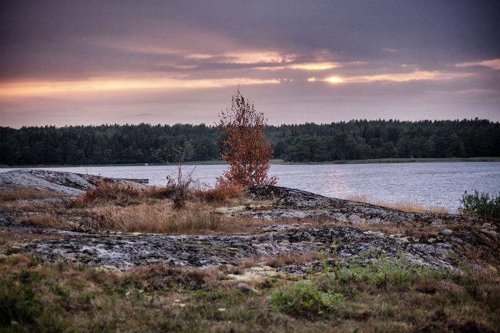 Mit einem Camper Unterwegs_Sonnenuntergang