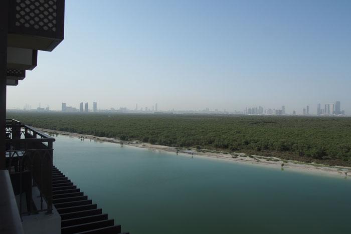 abu-dhabi-mangroven