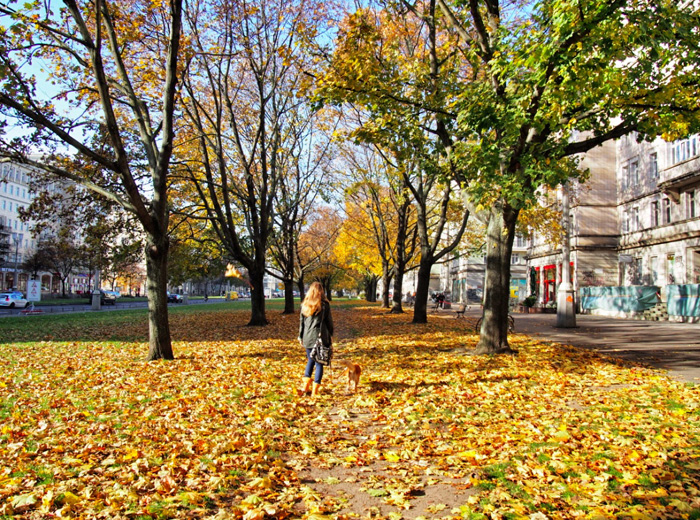 SPaziergang-im-Herbst