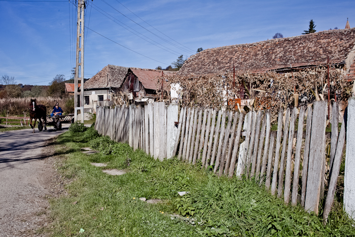 02-Kutsche-Rumänien