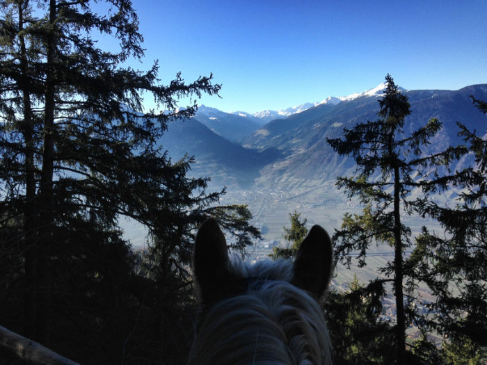 Haflinger_reiten_Südtirol_Aussicht-w700