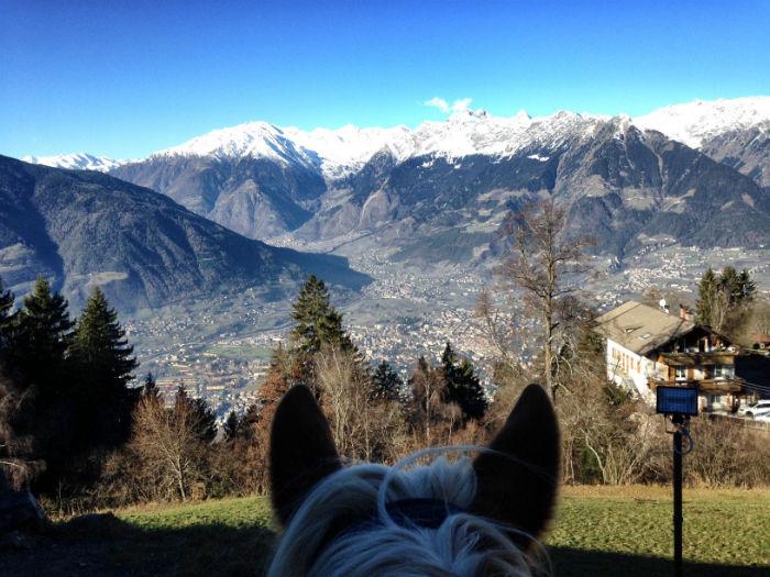 Haflinger_reiten_Südtirol_Aussicht_StKathrein-w700
