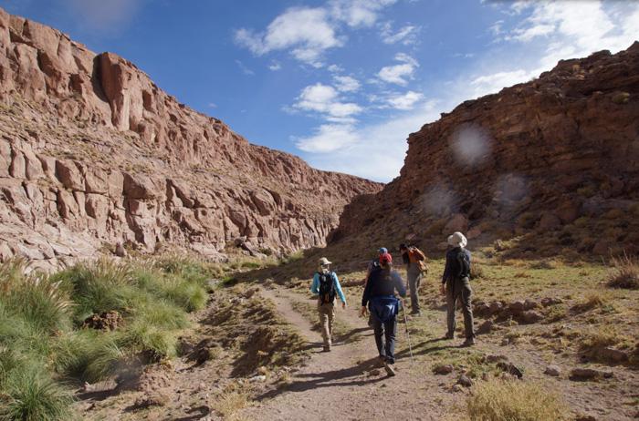 Wandern-Atacama