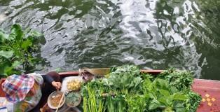 bangkok-frau-schwimmender-m_Snapseed