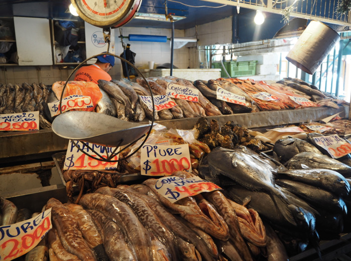 Fischmarkt-Santiago-de-Chile