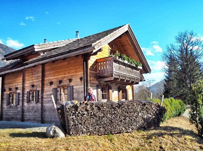 Holz-vor-der-Hütte