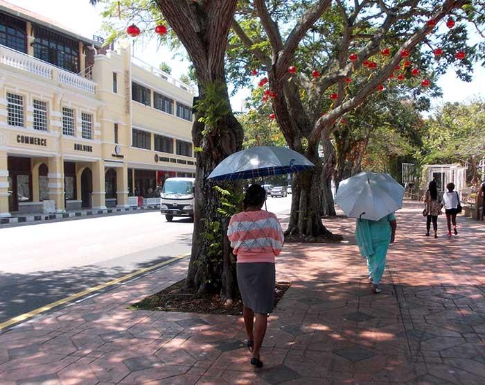 Asiatinnen Mit Schirm