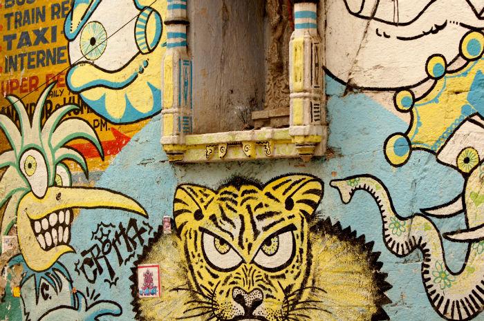 Grafitti in Udaipur