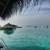 Maafushivaru-Malediven