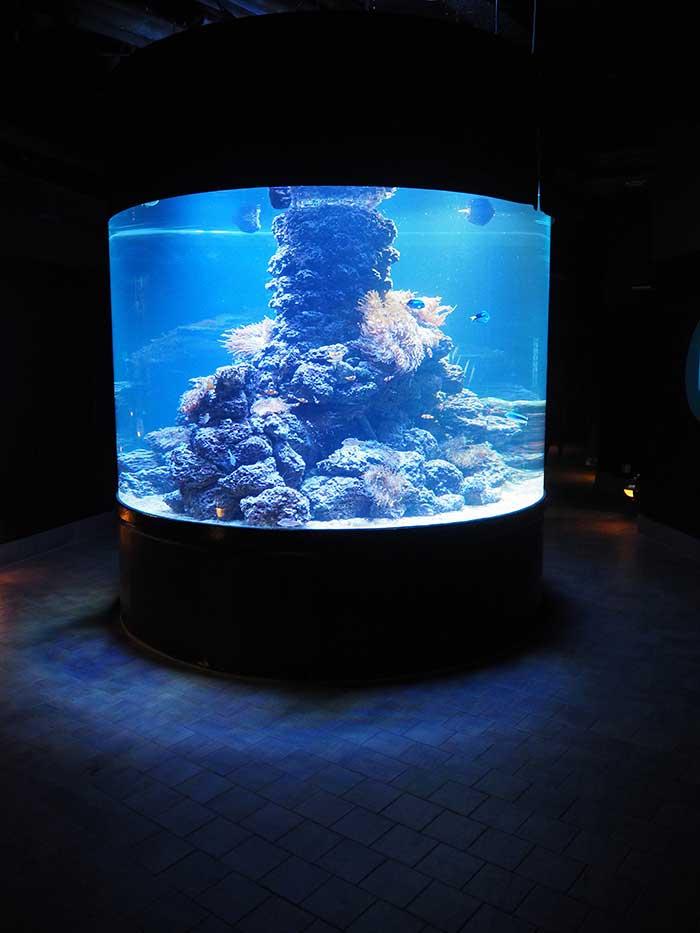Tropen Aquarium Hamburg