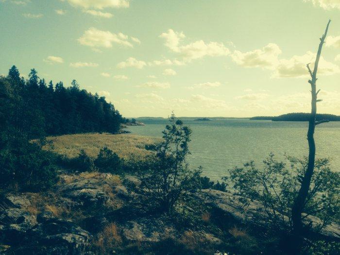 Urlaub in Turku - Ausblick vom Wald