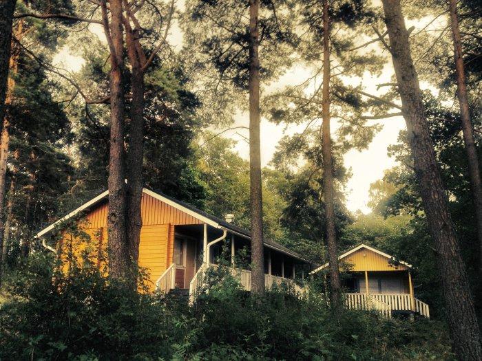Urlaub in Turku - Naantalis Wald