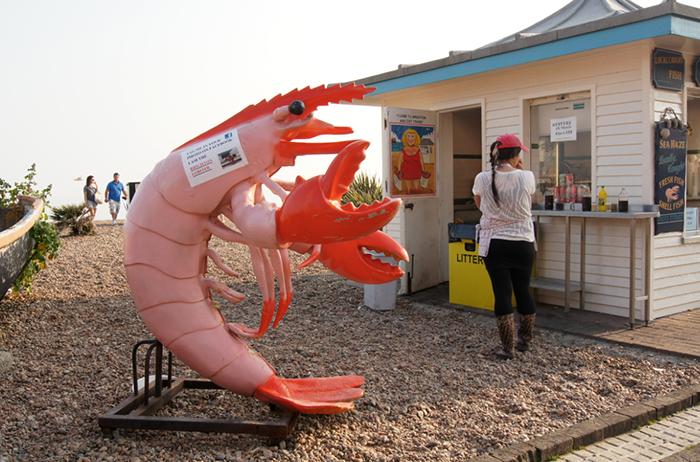 Brighton_Crab