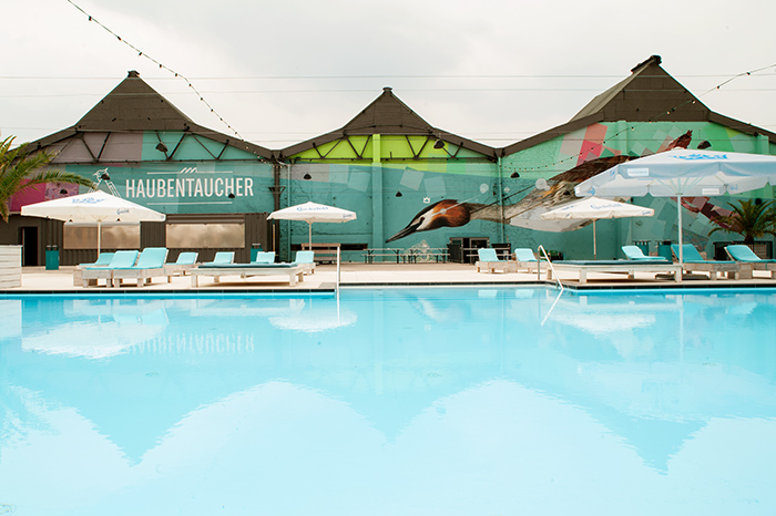 haubentaucher_pool