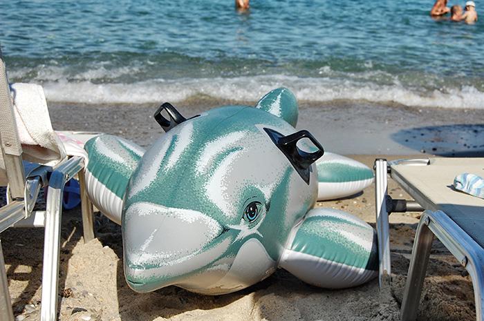 urlaub-in-thessaloniki-delfin