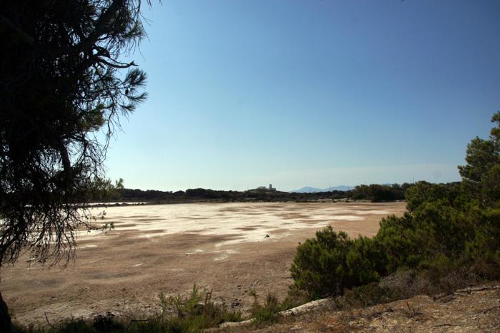 Formentera-Salinen
