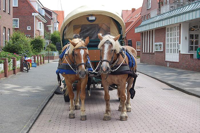 Pferdekutsche auf Juist