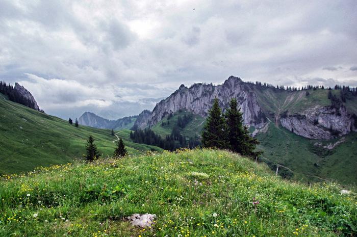 Wanderung-Brgenzerwald