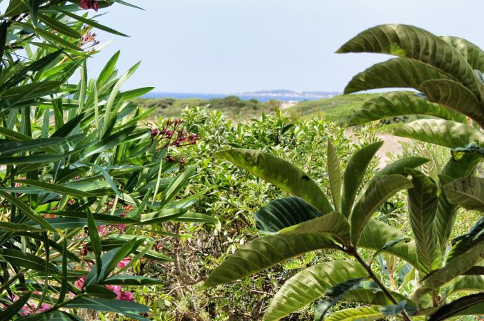 wochenende-auf-mallorca-ausblick-aus-der-wohnunge