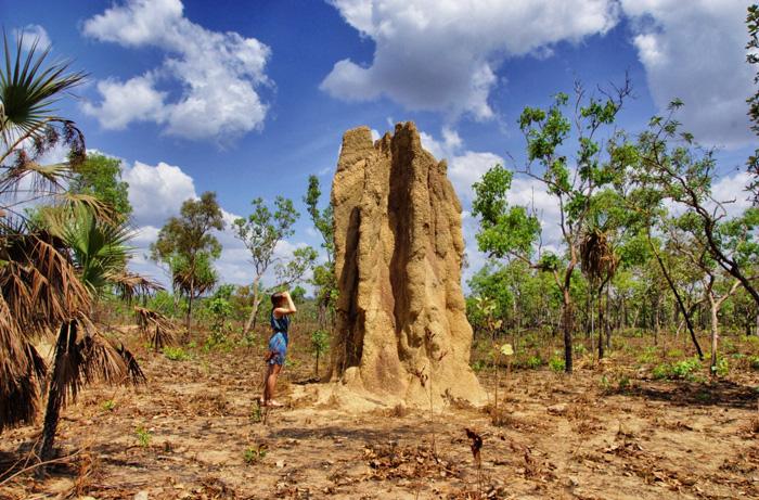 Litchfield-National-Park-Australia
