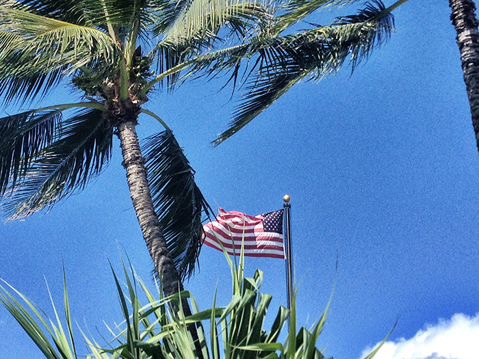 Oahu_Palme-und-ameri-kanische-Flagge