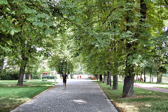 Urlaub-in-Ostrava_Jogger-im-Park