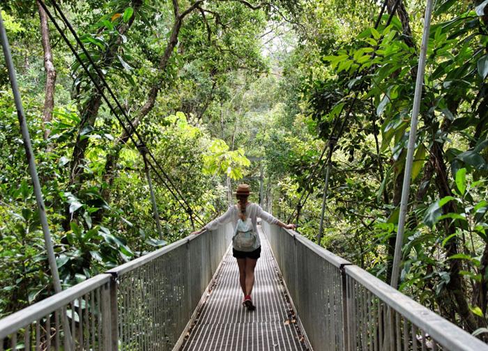 Christine-Neder-Dschungel