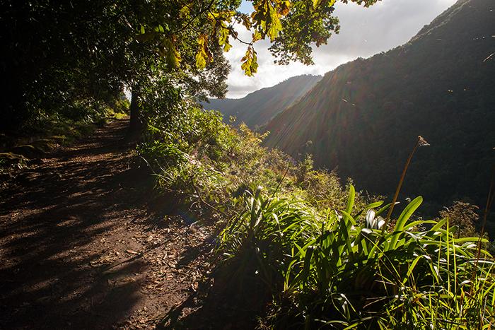 Madeira_Laveda_Wanderung