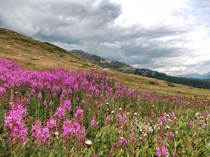 Engadin-Berglandschaft2