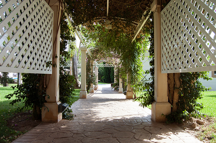 Mallorca_Geheimtipps_Gang-durch-Blumen